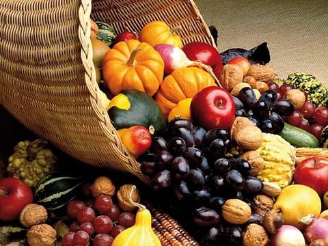 Cultura agroalimentare: accordo Coldiretti e Ufficio Scolastico Regionale