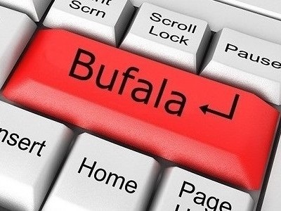 Le bufale su internet, come riconoscerle