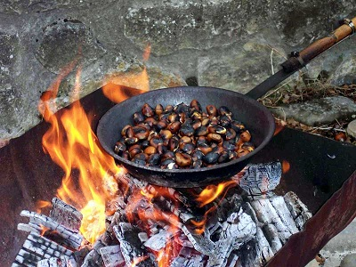 """Oasi WWF di Pannarano: il 26 ottobre l'iniziativa """"Bentornate caldarroste, tra antichi sapori e nuovi colori"""""""