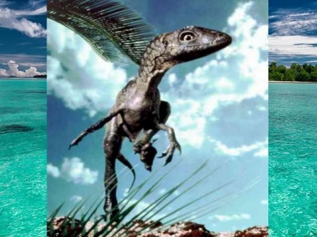 'Giornate Europee del Patrimonio': dinosauri e fossili presso l'ex Convento San Felice