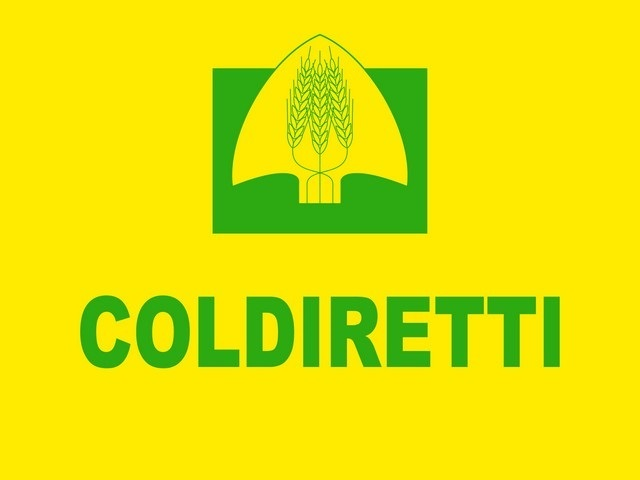 Coldiretti: bene per il Sannio l'obbligo di indicazione dell'origine del grano