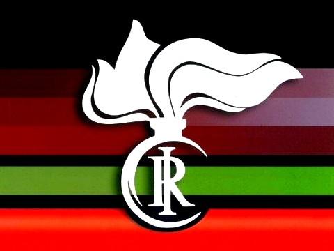 http://www.realtasannita.it/bt_files/newspaperFiles/logocarabinierinas_1.jpg
