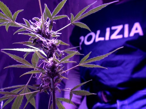 Progetto 'Pusher 2': arresti e perquisizioni della Polizia di Stato