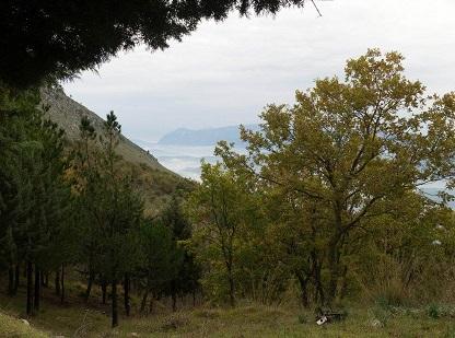 Nasce Terra&Radici per far conoscere le bellezze della Valle Vitulanese e promuoverne lo sviluppo