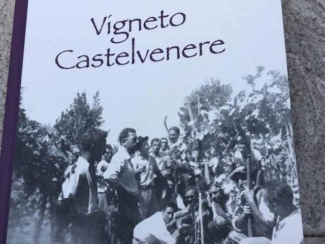 'Vigneto Castelvenere': il 15 settembre la presentazione del saggio scritto da Pasquale Carlo